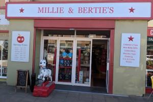 Independent Children's Toy Retailer