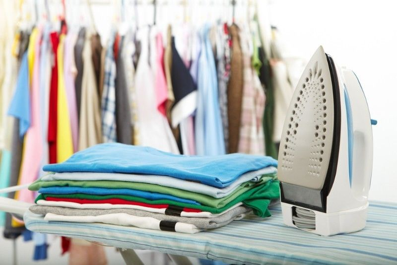 Professional Ironing Services Business